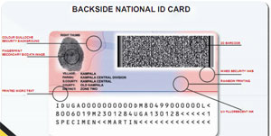 ID-back