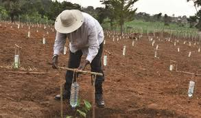 Farmers to reap from Ushs 30 trillion 2017/2018 Budget