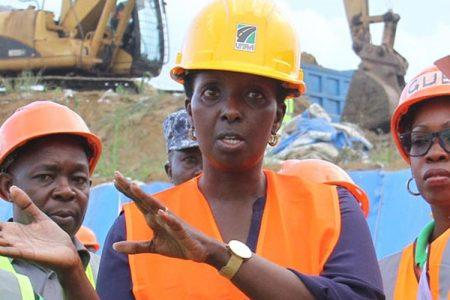 Kagina's Dott Services woes