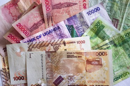 Shilling gains strength, forms new support level