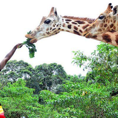 BOOSTING VACATION INDUSTRY: Uganda Heads To Kenya For Tourism Showcase
