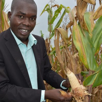 SEEDS OF HOPE: How improved seed varieties are transforming farmers' lives in northern Uganda